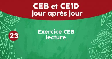 Exercice CEB lecture