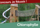 Concours Chlorophylle