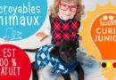 Curio Junior : Faits incroyables sur les animaux